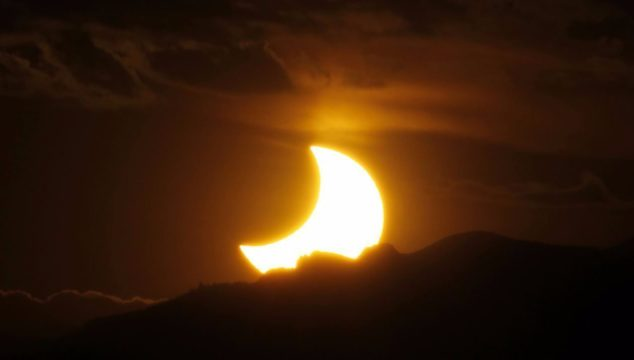 Will the Great American Eclipse make animals act strangely? Science says yes